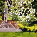 Susan's Prized Garden